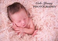 evie preview newborn-2